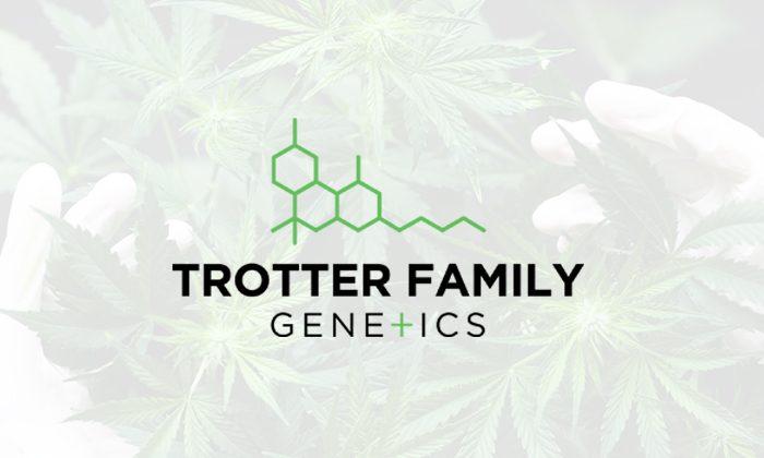 Trotter Family Genetics